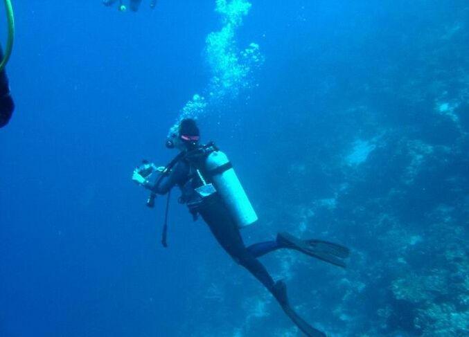 潜水、海洋资讯相关文章征稿令